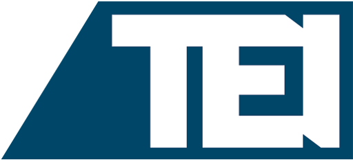 Logo TEI's 2021 Virtual Midyear Conference